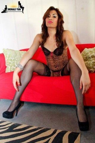 Yazlene in leopard print lingerie on shemaleyumtbms