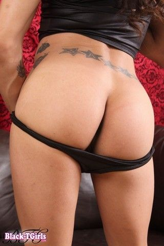 Welcome Back Kitty Hung on blacktgirlstbms
