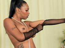 Miss Mink in Black Lingerie on blacktgirlstbms