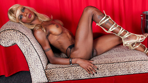 Paris Foxx (aka Cassandra) on blacktgirlstbms