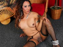 Sexy Latin Tgirl Daisy! on shemaleyumtbms