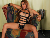 Meet Sexy Latin Shemale Perla! on shemaleyumtbms