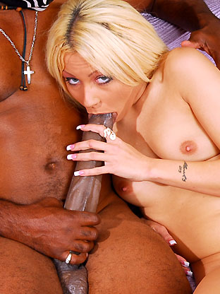 Kylie Morgan - V2 on trannyseducers